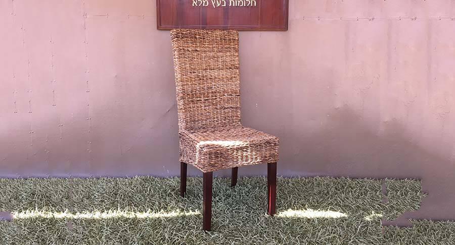 """כיסא אוכל ייחודי במחיר מבצע: 600 ש""""ח במקום 1200 ש""""ח"""