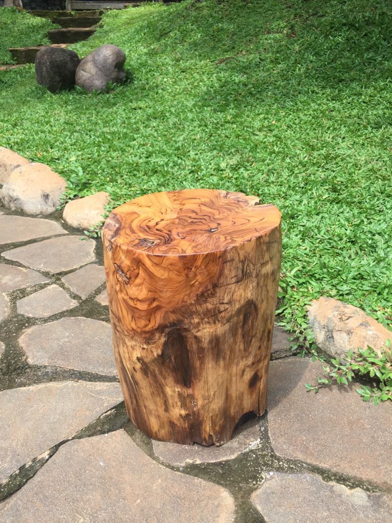 """בול עץ טיק במחיר מבצע 690 ש""""ח"""
