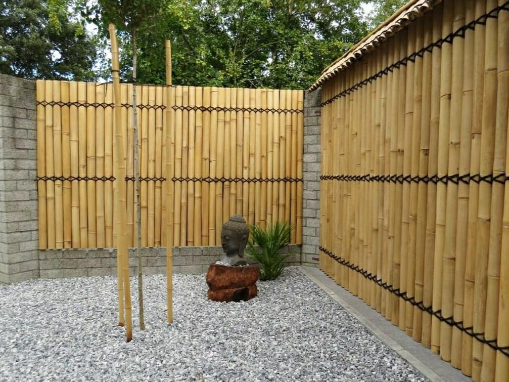 גדר במבוק צהוב קוטר מוט 8 סמ