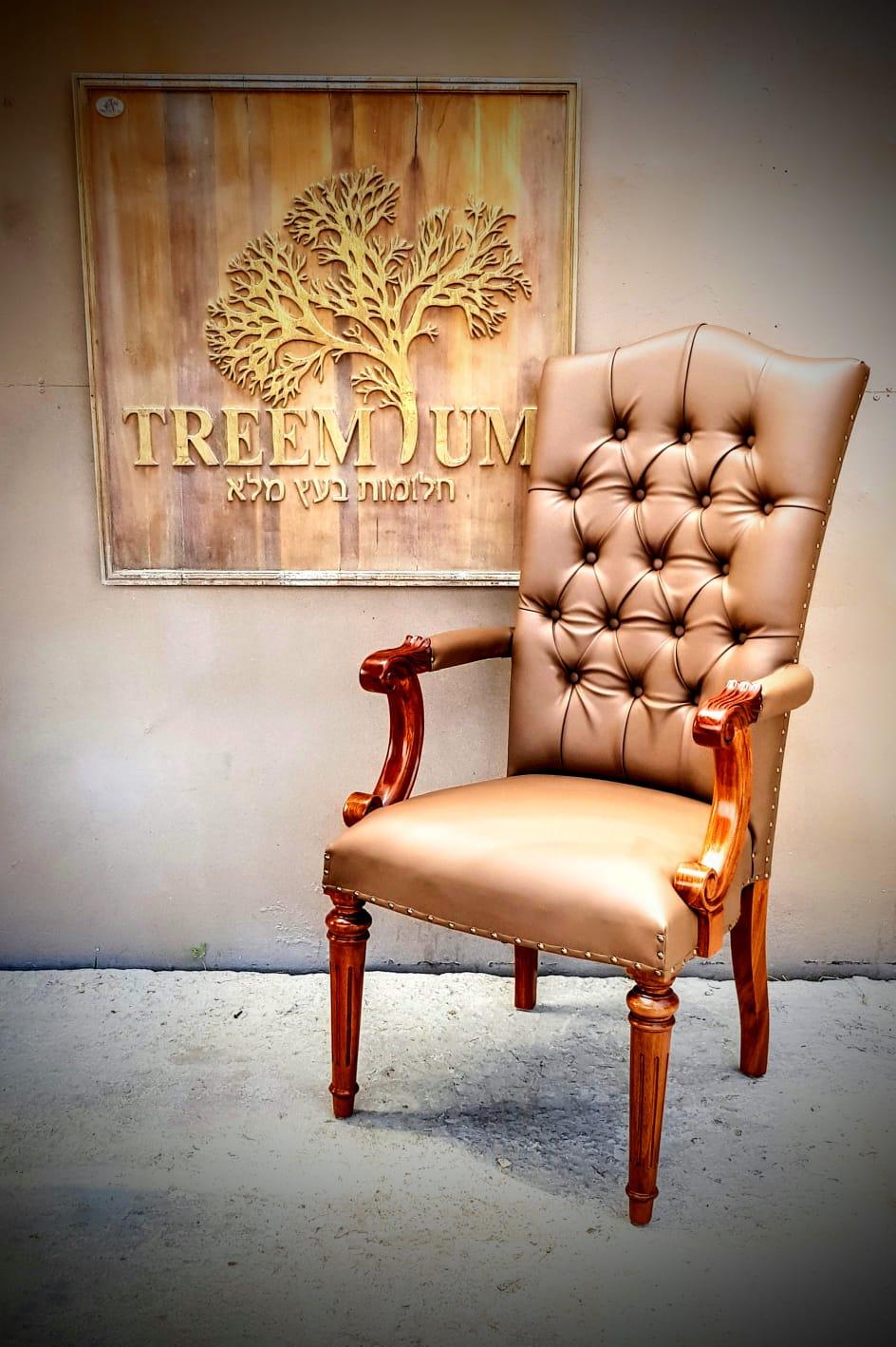 כיסא דגם 2549 מוסדות ויזניץ בית שמש