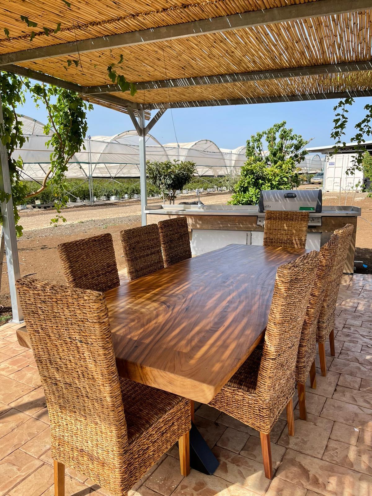 שולחן גזע פרוס בשילוב כיסאות סיגראס מרכז מבקרים אגרסקו בלוברי